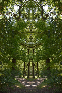 mächtiges Baumwesen von alana