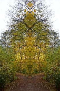 magisches Baumwesen am Ende des Weges von alana