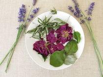 Wohlriechendes Duftpotpourri mit Rosenblüten, Waldmeister, Quittenblättern und Lavendel von Heike Rau