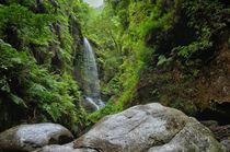 Wasserfall Los Tilos by Iris Heuer