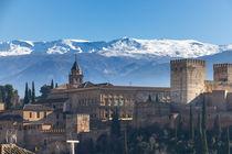 Alhambra Teilansicht Alcazaba und Palacio de Carlos V von Christoph Hermann