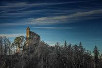 Ruine Altbodman bei Bodman-Ludwigshafen - Bodensee von Christine Horn