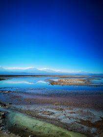 'lagoon' von emanuele molinari