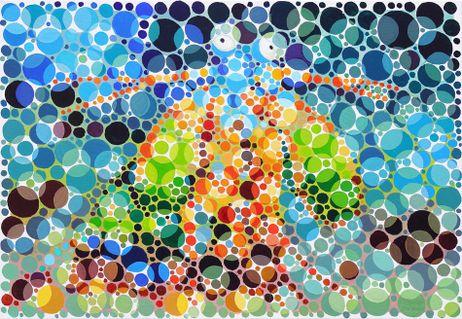 Oelbild-fangschreckenkrebs-farbtest-print