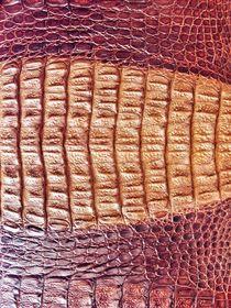 Crocodile Genuine Leather von bebra