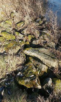 Ein Steine-Leben... von Rena Rady