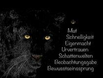 Krafttier schwarzer Panther - Jäger der Nacht von Astrid Ryzek