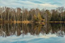 Moorsee mit Holzhütte im Pfrunger-Burgweiler Ried bei Ostrach-Wilhelmsdorf by Christine Horn