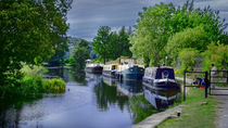 Narrow Boats by Colin Metcalf
