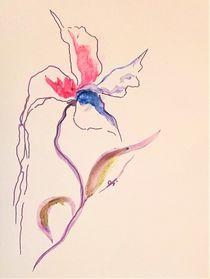 Blume6 von Theodor Fischer