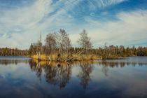 Der Vogelsee im Pfrunger-Burgweiler Ried bei Ostrach-Wilhelmsdorf by Christine Horn