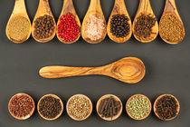 Feine Gewürze aus aller Welt - Fine spices from all over the world 3 von Thomas Klee