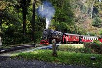 Harzquerbahn von Rolf Müller