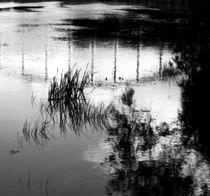 Bridge Reflection von Marie Selissky