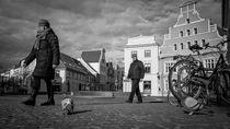 Wismarer Straßenszene mit Geflügel von Michael Winter
