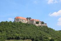 Schloss Neuenburg von alsterimages