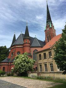 Brüderkirche Altenburg von alsterimages