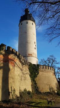 Hausmannsturm Altenburg von alsterimages