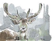 Hirsch Deer von Thomas Neumann