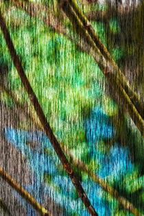 Nature Green abstract by Marie Selissky