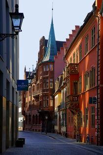 Haus zum Walfisch Freiburg by Patrick Lohmüller