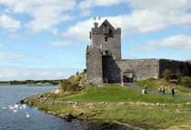 Dunguaire Castle County Galway Ireland 16 von GEORGE ELLIS