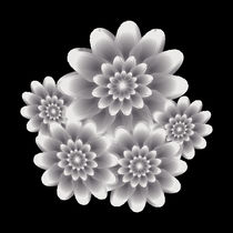 Five silver flowers von feiermar