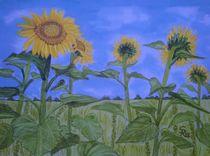 Sonnenblumenfeld von Rena Rady