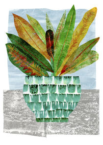 Croton Still Life by Lesley Fitzpatrick