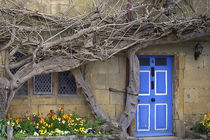 Blue Door 03 von GEORGE ELLIS