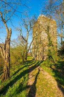 Burg Sponheim-Wohnturm 42 by Erhard Hess