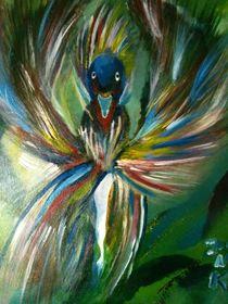 Paradiesvogel von Jovica Noah Kostic
