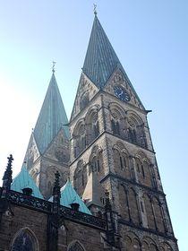 Dom Bremen Türme von alsterimages