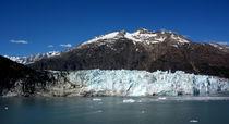 Glacier Bay, Alaska, USA by Philip Shone