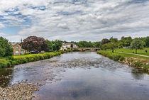 River Derwent Flowing Through Cockermouth von Ian Lewis