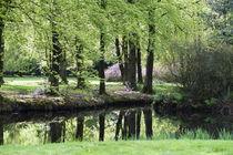 Grüne Parklandschaft von Heidi Bollich