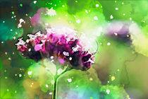 Blüten in Aquarelltechnik von Petra Dreiling-Schewe