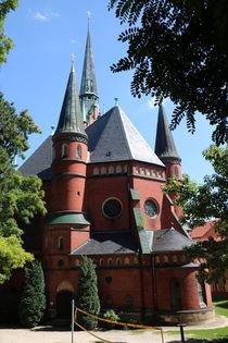 Brüderkirche Altenburg Rückseite von alsterimages