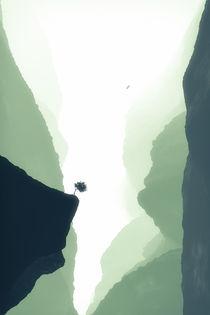 In Mist Gorge by cinema4design