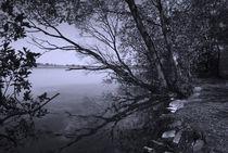 Idylle am See von Heidi Bollich