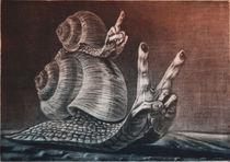 'Schnecken' by Anna Eliza Lukasik-Fisch