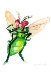 Fliege by Anna Eliza Lukasik-Fisch
