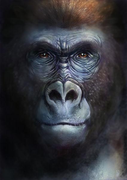 Gorilla-l2