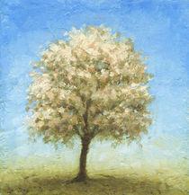 cherry blossom von greg becker