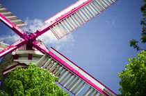 Moulin Pink I von Thomas Schaefer