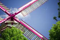 Moulin Pink I von Thomas Schaefer