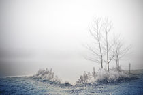 Winterlandschaft II by Thomas Schaefer