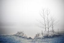 Winterlandschaft II von Thomas Schaefer