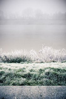 Winterlandschaft im Nebel III by Thomas Schaefer