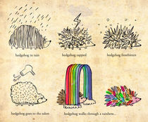hedgehog goes rainbow by Joanne Liu